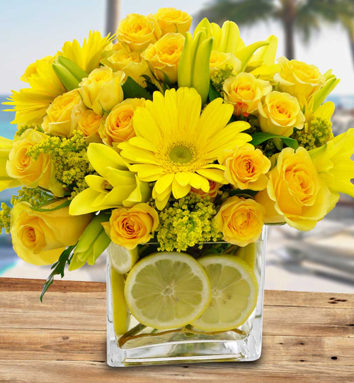 Citrus Sunshine