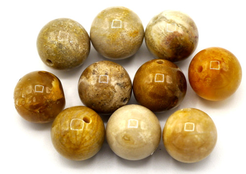 10pc 10mm Fossil Coral Round Beads