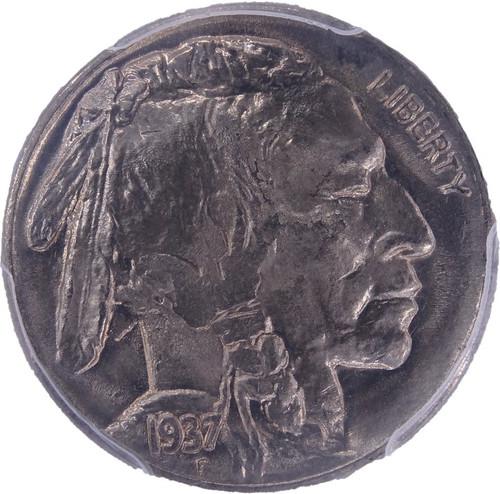 1937 Buffalo Nickel MS67 PCGS - obverse