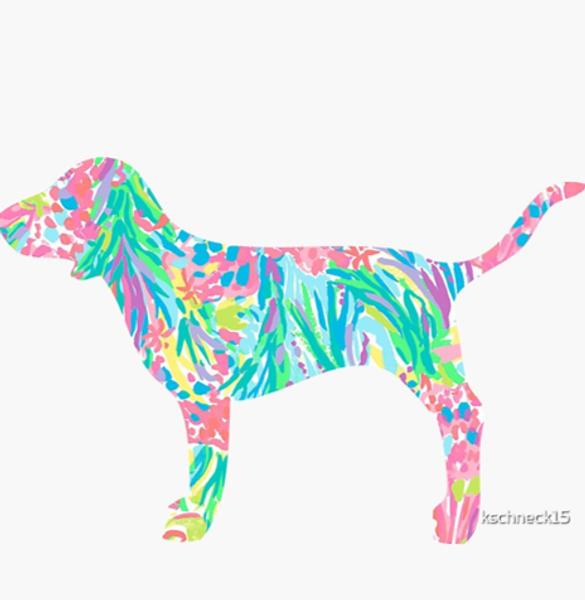 Preppy Lilly Dog