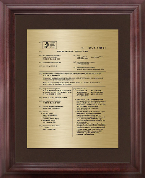 Framed Patent Front Page for Foreign Patents