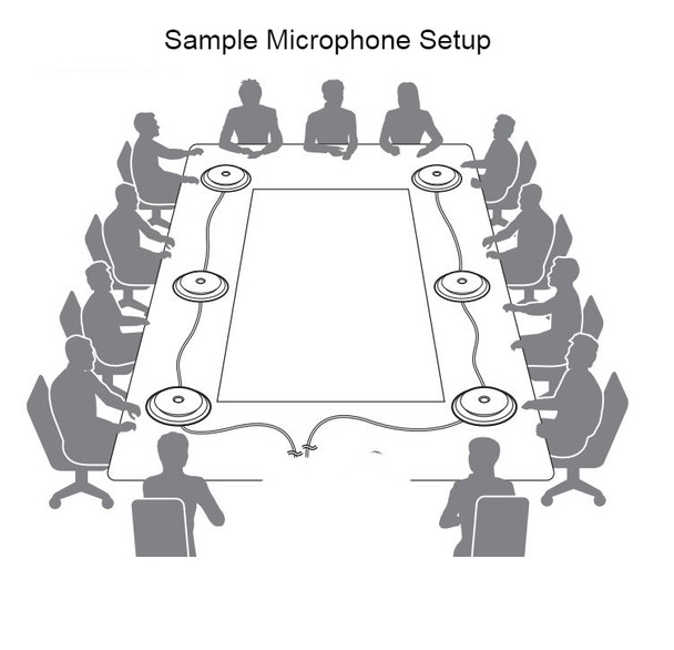 Sample Multiple Zoom Microphones