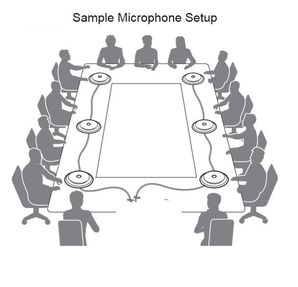 Martel Zoom Multiple microphones example
