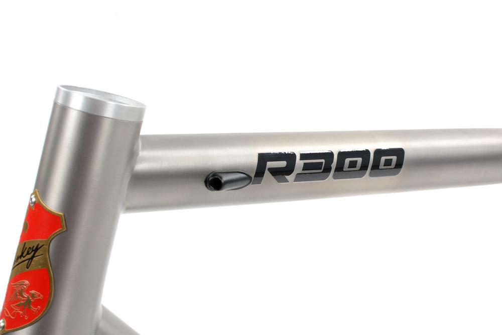 R300 Road Frameset