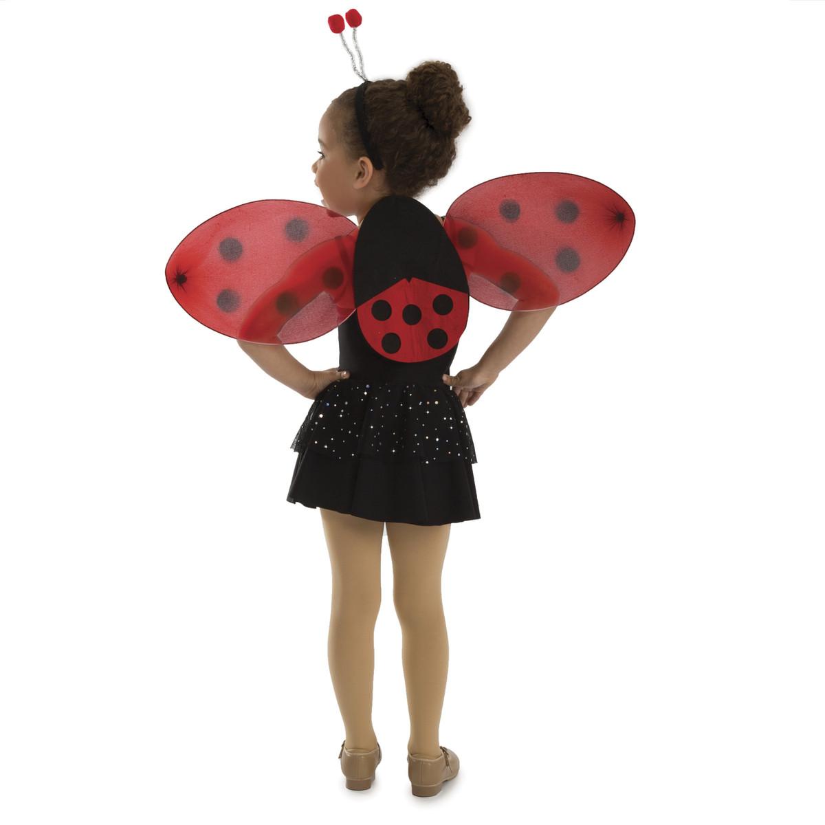 Ladybug Accessory Set