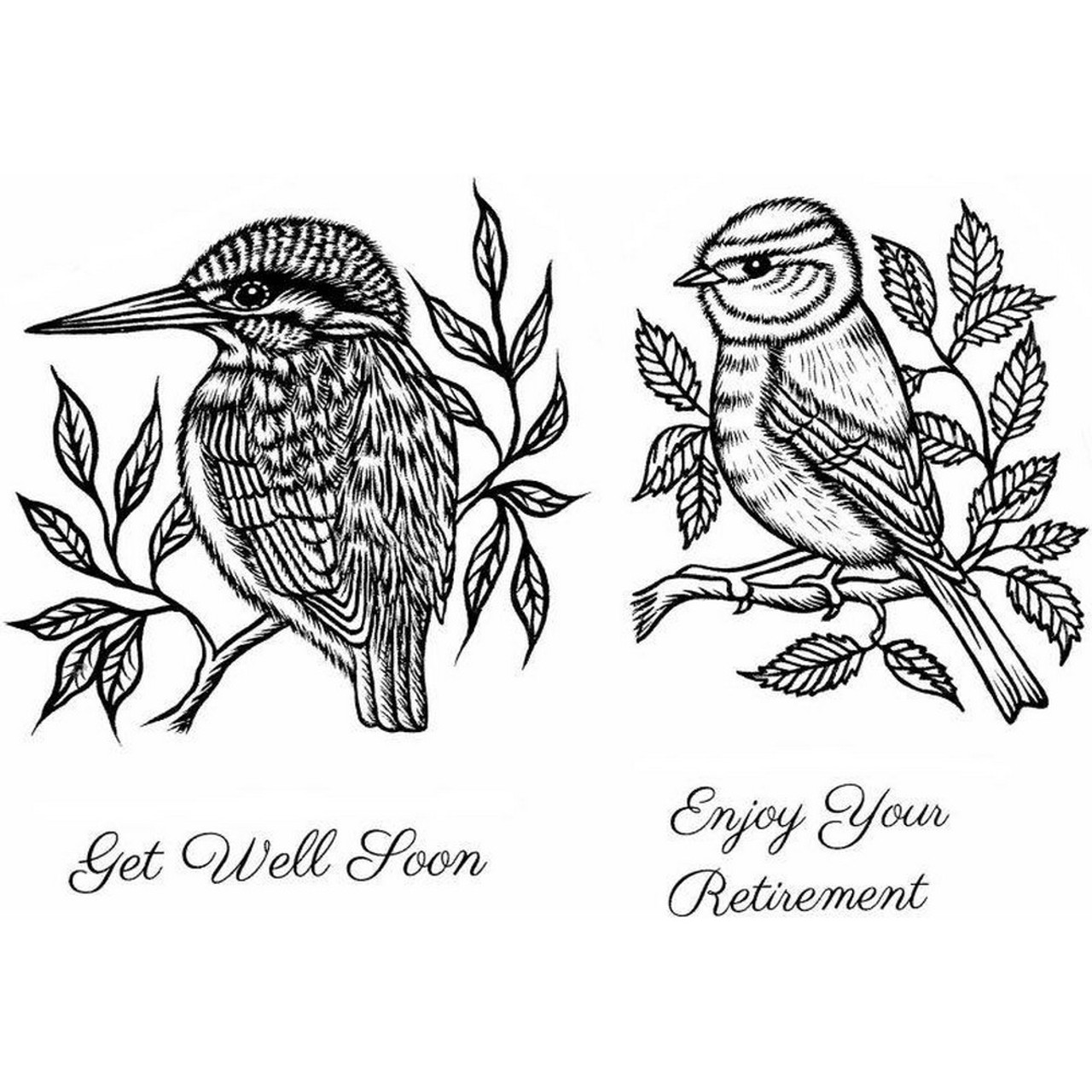 Sweet Dixie - Clear Stamps - Kingfisher & Blue Tit