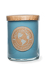 16oz soy eco candle BLUEBERRY PATCH