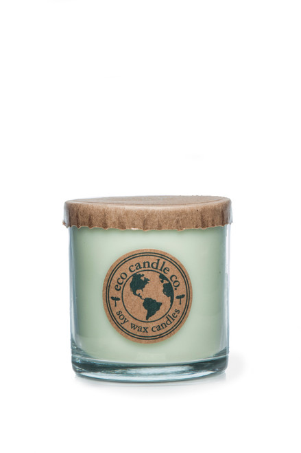 6oz soy eco candle EUCALYPTUS MINT