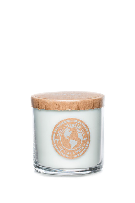 6oz soy eco candle SPA DAY