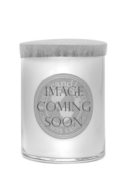16oz soy eco candle ALL SCENTS