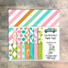 """Contentment Paper Collection - 24 Double Sided 6x6 Papers - Coordinates with """"Greener Grass"""" Devotional Kit"""