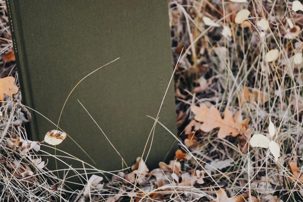 Growth Book - Lagoon