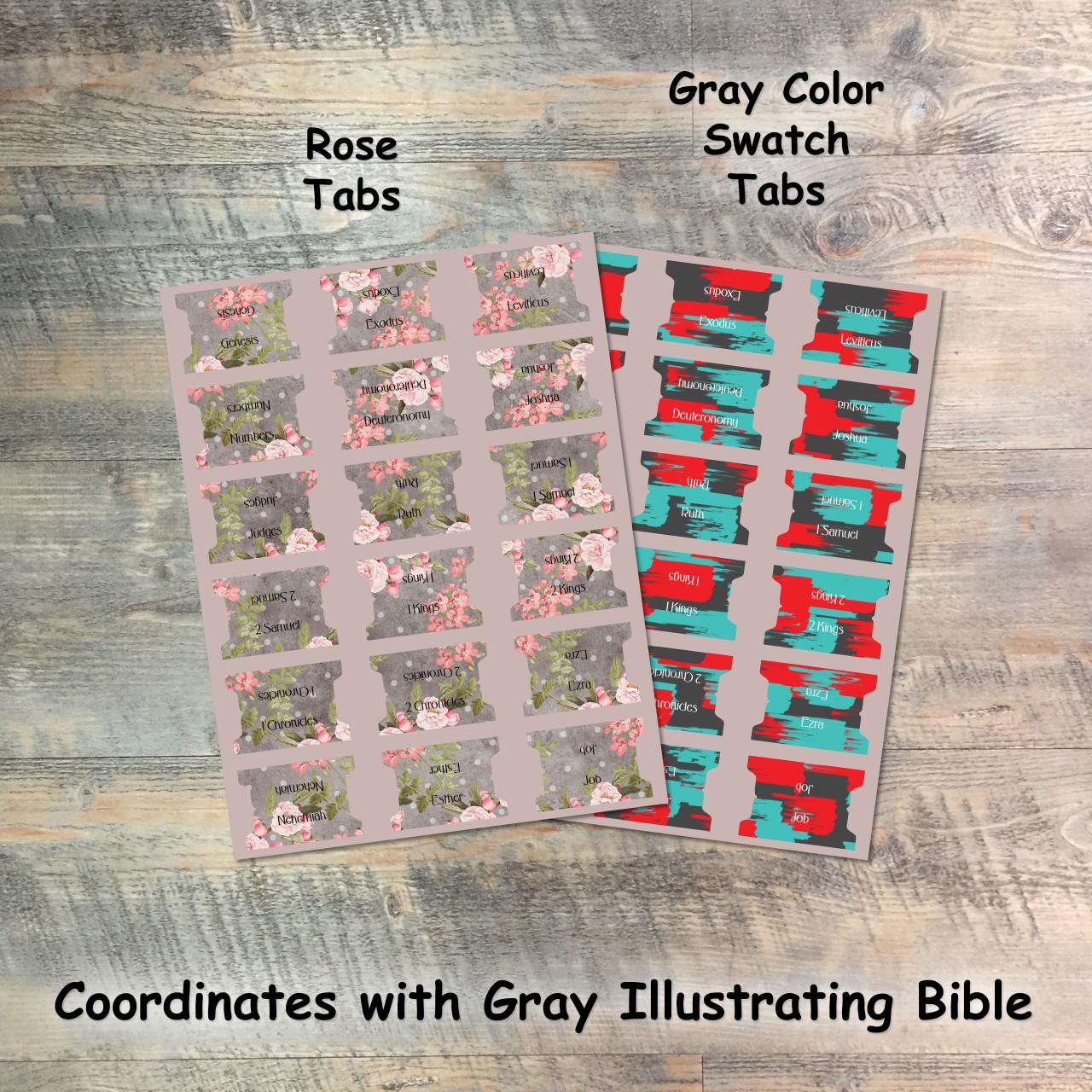 Illustrating Bible NIV Dark Gray