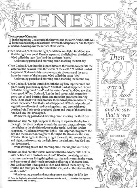 Inspire Bible NLT: The Bible for Creative Journaling, for your Illustrated Faith Bible Journaling (Softcover, Aquamarine)