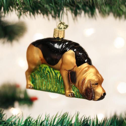 Bloodhound OWC