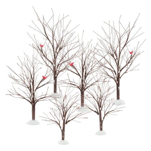 Bare Branch Tree, Set Of 6