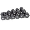 Multiple weights of the CAP Neoprene Coated Dumbbell