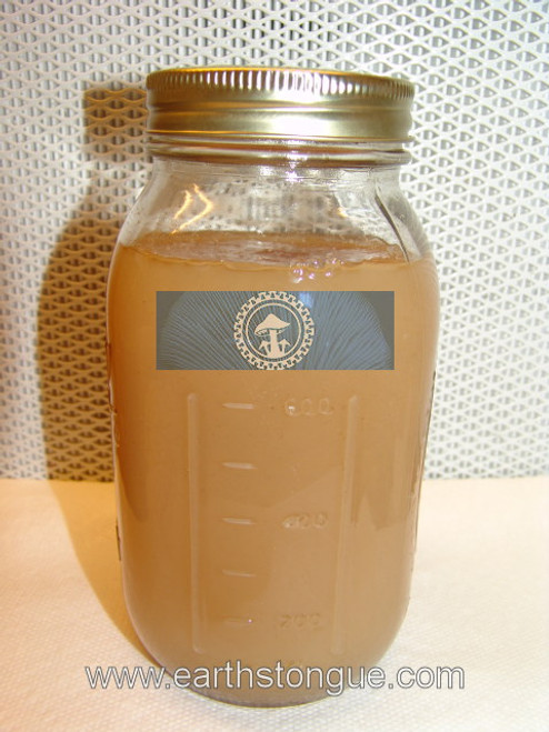 Sterile Malt Extract Agar Media