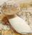 Brown Beech Mushroom - Hypsizygus Tessellatus