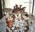 SHIITAKE - Lentinula edodes