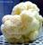 Lions Mane Mushroom Grow Kit