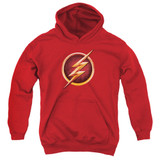 The Flash Chest Logo Youth Pullover Hoodie Sweatshirt Red