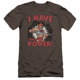 Masters Of The Universe I Have The Power Premium Canvas Adult Slim Fit 30/1 T-Shirt Charcoal