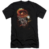Lord of the Rings You Shall Not Pass Adult 30/1 T-Shirt Black