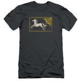 Lord of the Rings Rohan Banner Adult 30/1 T-Shirt Charcoal