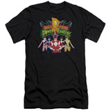 Power Rangers Rangers Unite Adult 30/1 T-Shirt Black