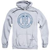 Power Rangers Angel Grove HS Adult Pullover Hoodie Sweatshirt Athletic Heather