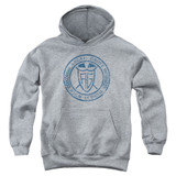 Power Rangers Angel Grove HS Youth Pullover Hoodie Sweatshirt Athletic Heather