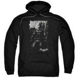 Batman Arkham Knight Bat Brood Black Adult Pullover Hoodie Sweatshirt