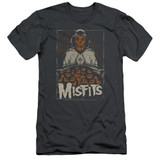 Misfits I Remember Halloween S/S Adult 30/1 T-Shirt Charcoal