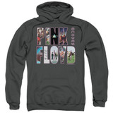 Pink Floyd Cover Adult Pullover Hoodie Sweatshirt Charcoal
