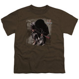 Stevie Ray Vaughan In Step S/S Youth 18/1 T-Shirt Coffee