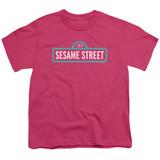 Sesame Street Alt Logo Youth T-Shirt Hot Pink