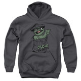 Sesame Street Early Grouch Youth Pullover Hoodie Sweatshirt Charcoal
