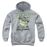 Sesame Street Canned Grouch Youth Pullover Hoodie Sweatshirt Athletic Heather