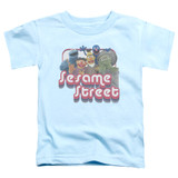 Sesame Street Groovy Group Toddler T-Shirt Light Blue