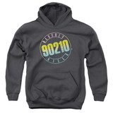 Beverly Hills 90210 Color Blend Logo Youth Pullover Hoodie Sweatshirt Charcoal