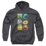 Sesame Street Group Squares Youth Pullover Hoodie Sweatshirt Charcoal