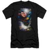 Superman In The Sky Adult 30/1 T-Shirt Black