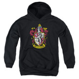 Harry Potter Gryffindor Crest Youth Pullover Hoodie Sweatshirt Black