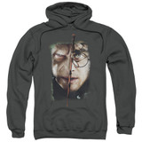 Harry Potter It All Ends Here Adult Pullover Hoodie Sweatshirt Charcoal