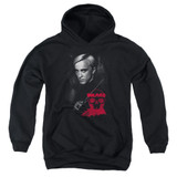 Harry Potter Draco Portrait Youth Pullover Hoodie Sweatshirt Black