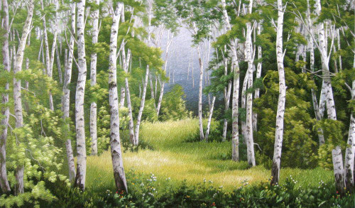 King Silk Art  Landscape Birch Forest in Spring 77176