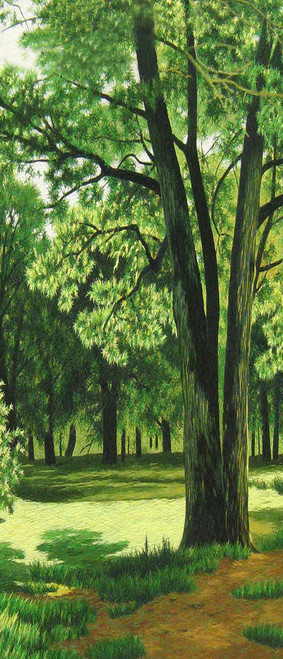 King Silk Art  Landscape Summer Green Forest-Vertical 3070 87262