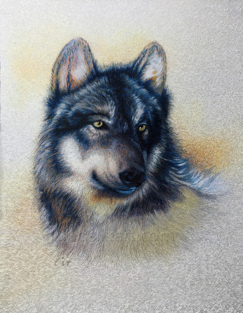 King Silk Art Wildlife Animal The Black Wolf Portrait 74128