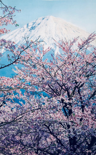 King Silk Art  Landscape Cherry Tree 77091